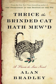 brinded-cat